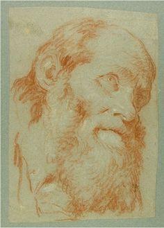 Giovanni Battista Tiepolo (1696-1770), Testa di un vecchio uomo barbuto, gesso rosso, toccato con il bianco, su carta grigio-blu sbiadito. Oxford, The Ashmolean Museum.