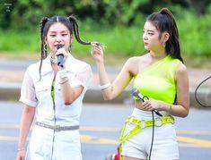 South Korean Girls, Korean Girl Groups, Korean Beauty, Bffs, Kpop Girls, Capri Pants, Fandoms, Shit Happens, Twitter