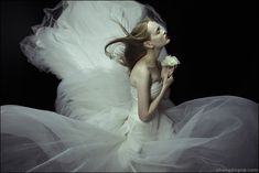 """""""Cold Flowers"""" by Zhang Jingna #photography"""
