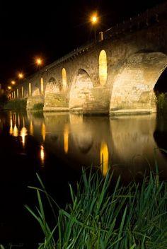 Nocturna del Puente de Piedra  Zamora  Spain