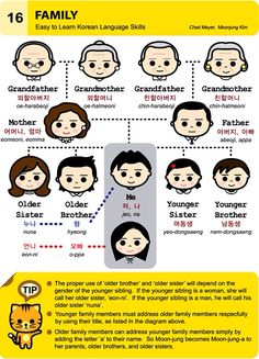 16. Family An Illustrated Guide to Korean by  Chad Meyer and Moon-Jung Kim