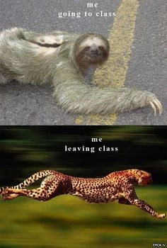 going to class vs. leaving class...