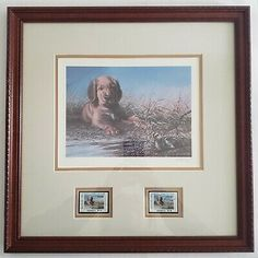 By Ralph J. Also Includes Original Print Holder/Sleeve (also numbered Numbered Poster Pictures, Pictures To Paint, Print Pictures, All Pictures, Stamp Printing, Sign Printing, Ducks Unlimited Prints, Bird Prints, Framed Prints