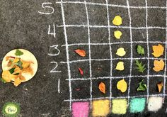 Pictograph Activities for Kindergarten - Leaf Chart – Play of the Wild Forest School Activities, Kindergarten Math Activities, Outdoor Activities For Kids, Outdoor Learning, Autumn Activities, Outdoor Education, Early Education, Outdoor School, Outdoor Classroom