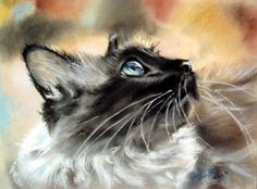 FABULOUS Pastel Painting by PAUL KNIGHT! (I Love, Love, Love the Upward Angle of the face!)  Cats ~ Blog of an Art Admirer