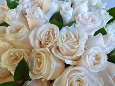 roses - vendela