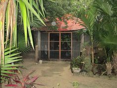 A unique experience in Puerto Moreols, Quintana Roo, MX. Puerto Morelos, Quintana Roo, Riviera Maya, Tours, Adventure, Adventure Game, Adventure Books