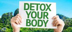 Ageless Body Detox: Is It an Effective Weight Loss Cleanse Program?
