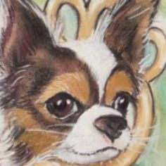 #therewillneverbeanotheronedirection in my life...#onedirection to the park with #thewanted #petco stop along the way!!! #furrypawlife www.furrypawpics.com #instart #petart #art #dogart #chihuahua #chihuahuasofig #longhairchihuahua