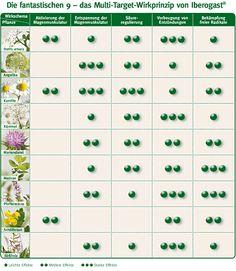 Plantas de Iberogast y efectos