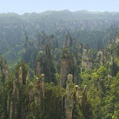 Wulingyuan Scenic and Historic Interest Area  A spectacular area stretching over more than 26,000 ha in China's Hunan Province, the site is dominated by more than 3,000 narrow sandstone pillars and peaks, many over 200 m high. Between the peaks lie ravines and gorges with streams, pools and waterfalls, some 40 caves, and two large natural bridges. In addition to the striking beauty of the landscape, the region is also noted for the fact that it is home to a number of endangered plant and…
