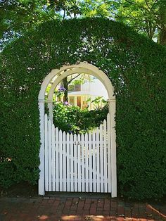 The only thing better than a fabulous garden gate is a fabulous garden gate framed by coiffed greenery.