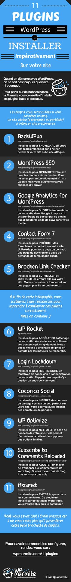 Infographie des meilleurs plugins WordPress More tips available on www.themepower.nl