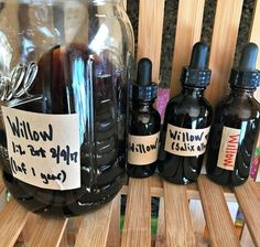 Here are three amber glass dropper bottles filled with my Willow Tincture, and I still have quite a bit left that I'm storing in this Mason jar downstairs in our cold room.