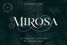 MIROSA Font – 20% Intro Offer by Tobias Saul on @creativemarket