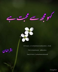 Urdu Quotes Images, Romantic Novels To Read, Online Novels, Knowledge Quiz, Quotes From Novels, Best Novels, Urdu Novels, Writing Styles, Reading Online