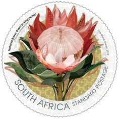 South Africa, National Flower, Giant or King Protea Stamp. Designed by Lize-Marie Dreyer New Africa, Out Of Africa, South Africa, African Theme, African Art, African Symbols, King Protea, National Symbols, Safari