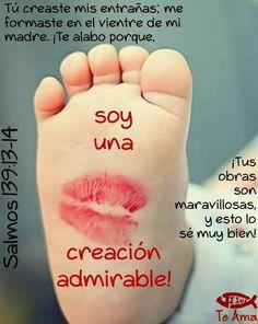 Salmos 139:13-14 Porque tú formaste mis entrañas; Tú me hiciste en el vientre de…