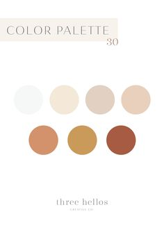Boho Feminine Color Inspiration for Branding, Wedding, Interior Decor. Desert and Earthy Color Palette, Three Hellos Creative Co. Blush Color Palette, Earthy Color Palette, Gold Color Palettes, Color Palate, Neutral Palette, Vintage Color Palettes, Website Color Palette, Sunset Color Palette, Website Color Schemes