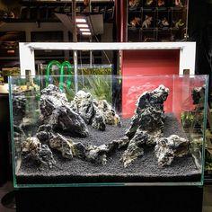 Precious Tips for Outdoor Gardens - Modern Aquarium Landscape, Nature Aquarium, Planted Aquarium, Aquarium Setup, Aquarium Design, Cichlid Aquarium, Aquarium Fish, Aquascaping, Nano Cube