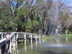 Jardim Botânico, Rio de Janeiro: Veja 9.683 avaliações, dicas e 3.460 fotos de Jardim Botânico, classificação de Nº 5 no TripAdvisor entre 536 atrações em Rio de Janeiro.