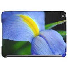 Blue and yellow iris flower.