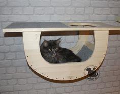 Katzenkoje für die Wand – roteratte.de