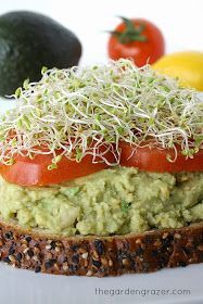 -- #pintermission 8/21/2014. Nice, neutral base for a sandwich. tried with alive tapenade, feta, and tomato on a plain bagel thin; YUM! love the idea of avocado as sub for cheese in grilled cheese, other sandwiches -- avocado chickpea mash