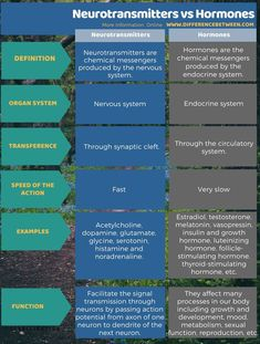 Difference Between Neurotransmitters and Hormones in Tabular Form Brain Science, Science Education, Physical Education, Psychology Notes, Brain Facts, Psychiatric Nursing, Nursing School Notes, Endocannabinoid System, Pharmacology Nursing