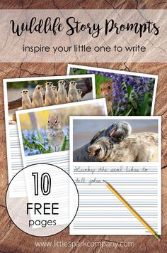 There's nothing like a great photo to ignite the creative writing spark in children. This set of 10 writing prompts includes fun wildlife photography and ruled lines for your little one to write their story. Free for subscribers to our Printables Library (free to join). #montessori #creativewriting Montessori Homeschool, Montessori Elementary, Photo Writing Prompts, Montessori Materials, Language Activities, Early Education, Creative Writing, Wildlife Photography, Teacher Resources