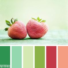 #color #palettes inspired by nature. #eventprofs