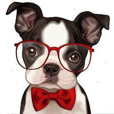 Find Out More On Friendly Boston Terriers And Kids Boston Terriers, Boston Terrier Kunst, White Puppies, Dogs And Puppies, Bulldog Puppies, Animals And Pets, Cute Animals, Cartoon Kunst, Dog Art