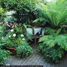 Secret corner hideaway. Looks so beautiful but I would constantly be looking for spiders!!!