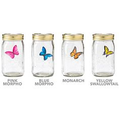 Electric butterfly in a jar. I think this is pretty cool. $9.99-$19.99 depending on what color you get.