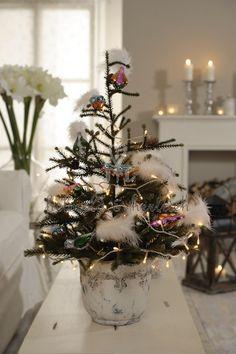 White Christmas, Holiday deco, living room, amaryllis, Christmas tree