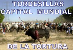 Spanish Animal Defender  On Monday September 10, at 11:00 am in Spain, we start another campaign on twitter to bring back for the abolition of the Toro de la Vega to be a trending topic.  It is a coordinated acti   to express our rejection of this crime. If you have twitter, please use it, and share this and post on your wall.  Volante has little more than a day until he will be tortured to death. We have to spread the word to stop his murder..  The new twitter hashtag is: # STOPToroDeLaVega
