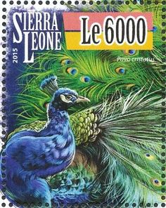 Peafowl, Art Folder, Vintage Stamps, African Animals, Sierra Leone, Peacocks, Pet Birds, Flamingo, Beautiful Places