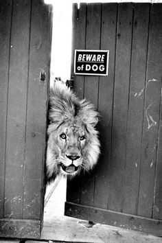 beware or not
