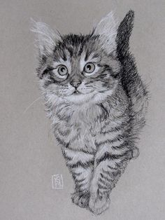 Thing One Drawing by Debra Jones