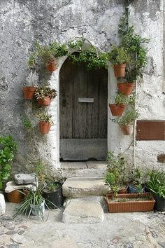 Puerta y flores.