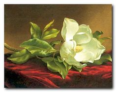 Grace your home wall with this wonderful and elegant look of fresh flowers into your home space by getting home this beautiful white magnolia flower floral picture art print poster. It captures the image of white magnolia flower lying into a table is sure to make this wall art focal point of your home. Its wooden golden frame accentuates the poster mild tone. The frame is made from solid wood with a smooth gesso finish. It will brighten up your room and make heads turn towards it.