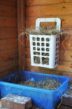 Can anyone sudgest a good hay rack? - Rabbits United Forum