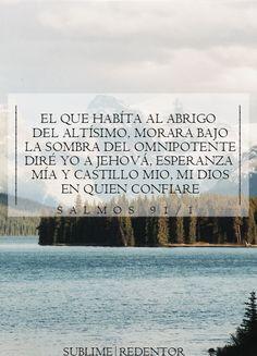El que habita al abrigo del Altísimo Morará bajo la sombra del Omnipotente. Diré yo a Jehová: Esperanza mía, y castillo mío; Mi Dios, en quien confiaré. Salmos 91:1