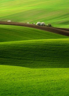 The gentle landscapes of the Midwest are soothing to me and bring to mind my childhood, goodness, green and bounty.  This is:  'Spring' by Pawel Kucharski.  This is my favorite pin, by far, on my board called:  LANDSCAPE