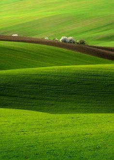'Spring' by Pawel Kucharski