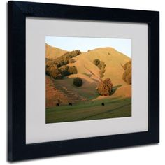 Trademark Fine Art Red Hills Flanders Canvas Art by Coleen Proppe, Black Frame, Size: 11 x 14, Multicolor