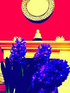 Shiva's Creations|Living Canvas Designs #art #abstract #buddha #hyacinth
