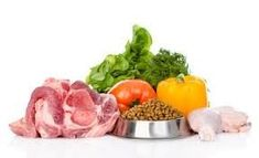 Best Organic Dog Food - Dog Food Components will give some basics information about dog food. Protein is аn essential component of аnу hеаlthу dog's diet. Best Cheap Dog Food, Best Organic Dog Food, Natural Dog Food, Best Dog Food, Make Dog Food, Homemade Dog Food, Pet Food, Dog Pancreatitis Diet, Shiba Inu