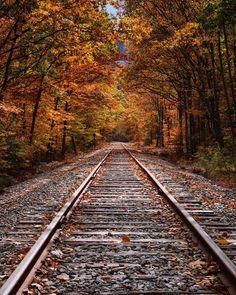 """autumncozy: """"By Vincent James """""""