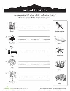 Worksheets: Animal Habitats for Kids